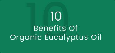 Benefits of Organic Eucalyptus Radiata Oil and Creams